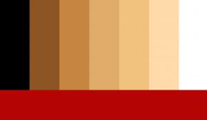 A palette of vertical bars depicting skins tones from black to white with a horizontal red bar at the bottom, created by Kal Sabir.